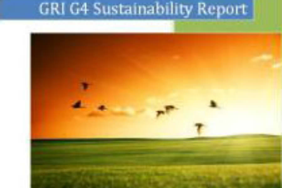 Centre for Sustainability and Excellence (CSE) Announces the Release of its first GRI G4 Sustainability Report