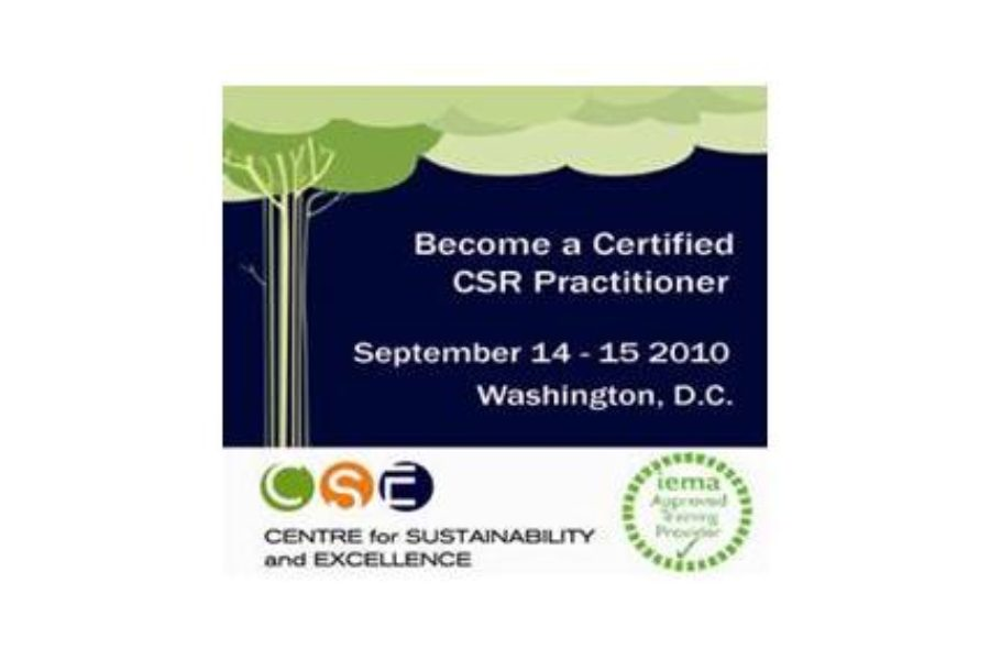 Shaping the future of sustainable business – Achieving the skills to guide green business at the dawn of the new decade