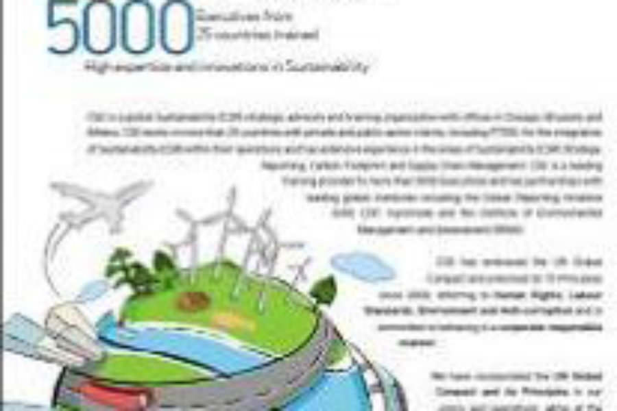 Sustainability Report (2010)