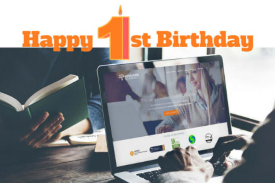 Sustainability Academy: 1 year of Innovation in Sustainability E-learning