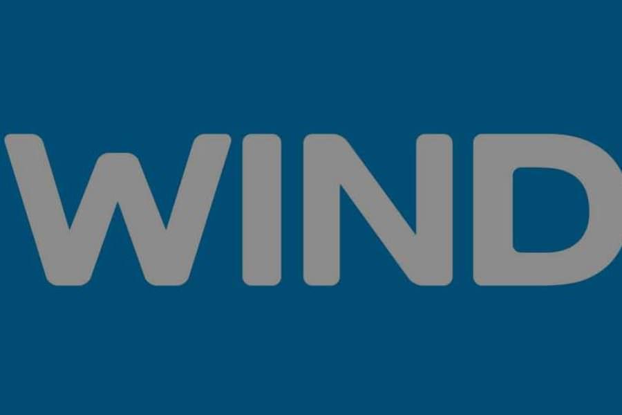 WIND – SROI