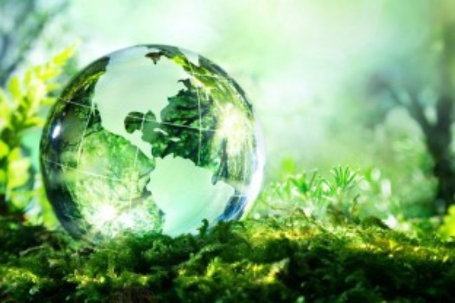 CSE's new Research links Financial and Corporate Sustainability (ESG) Performance