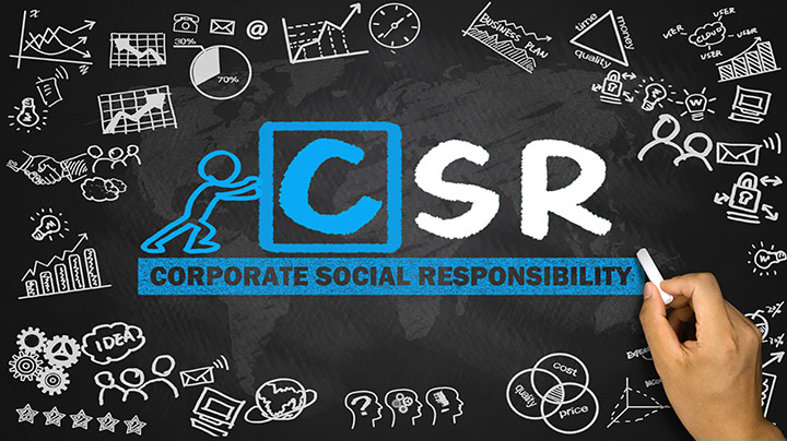 The 5 skills that will land you a job in Sustainability (CSR)