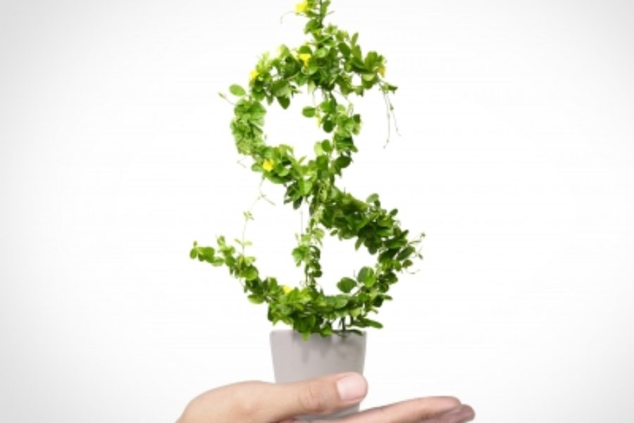 "How do ""green bonds"" contribute to sustainable development?"