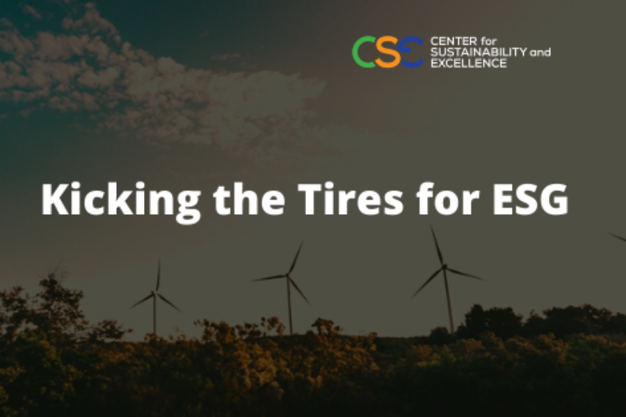 SASB and TCFD guidelines: Kicking the Tires for ESG