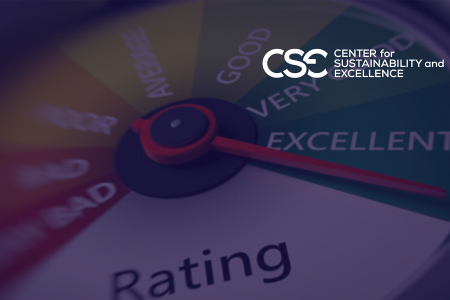 Wasted Effort Could Affect ESG Rankings. The importance of Materiality Assessment