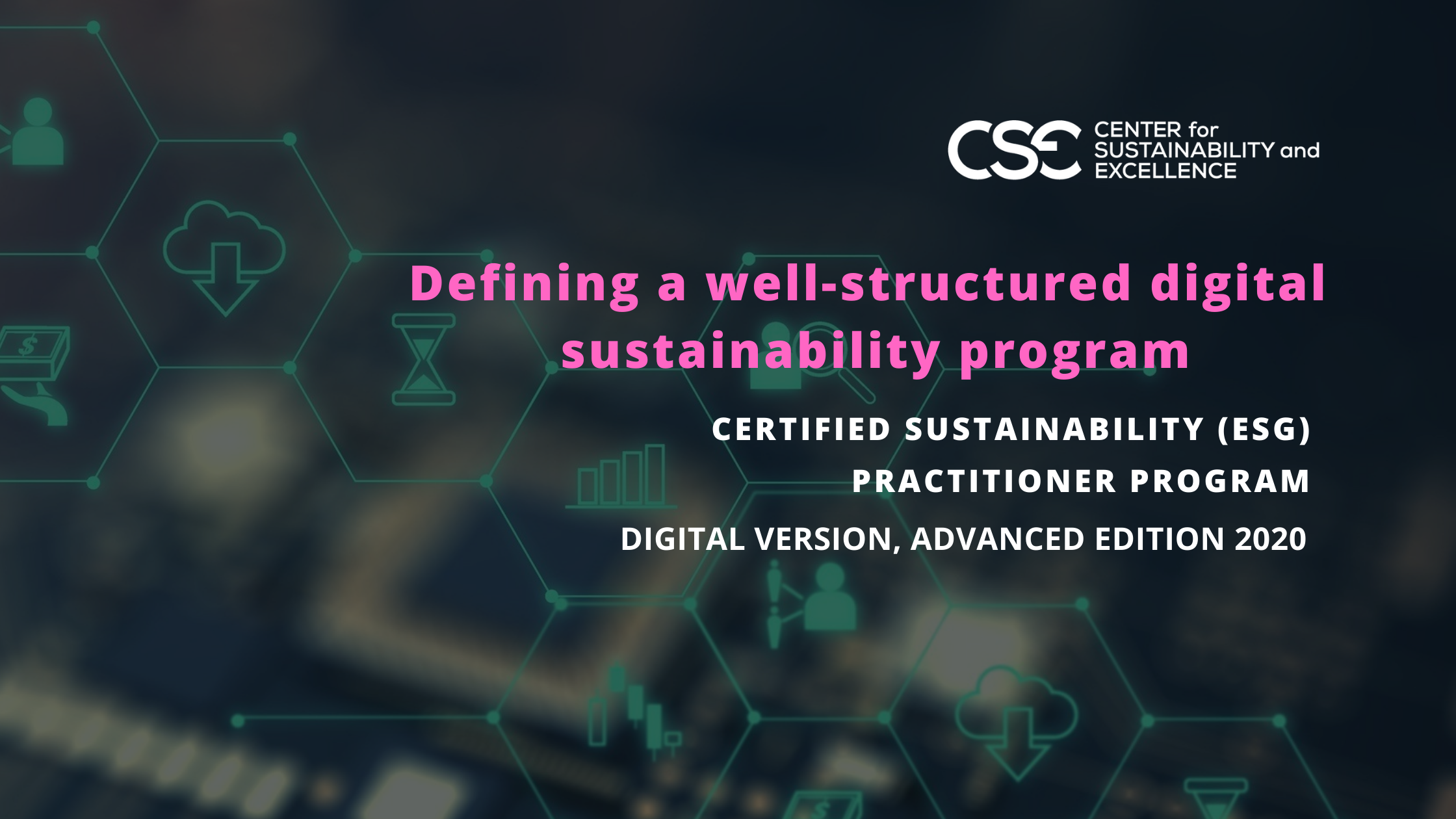 Defining a well-structured digital sustainability program