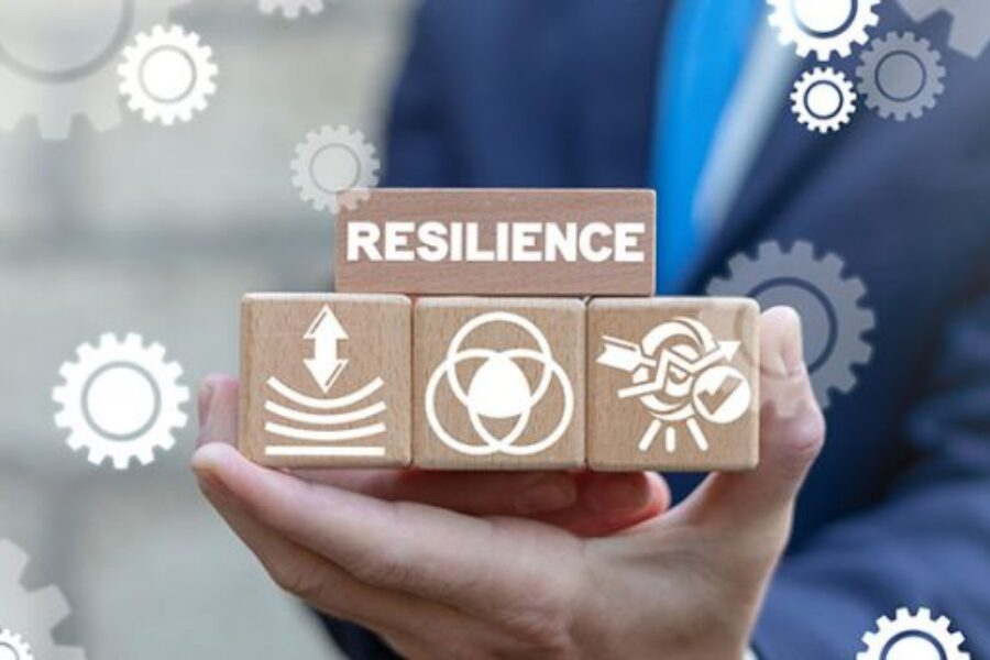 The imperative of business resilience planning; How is Dubai coping.