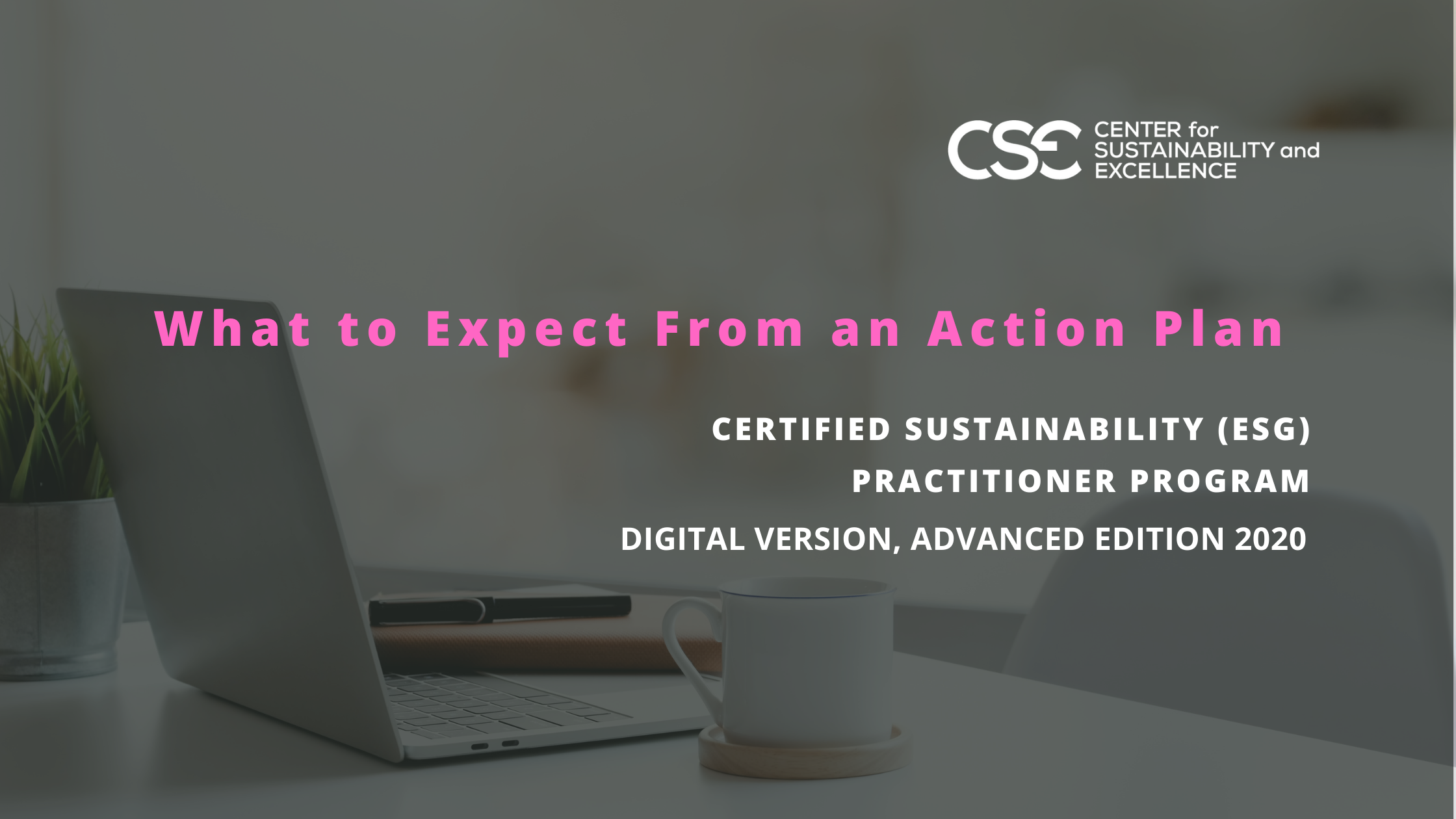 Part 1 in our series What to Expect from a Digital Sustainability Training