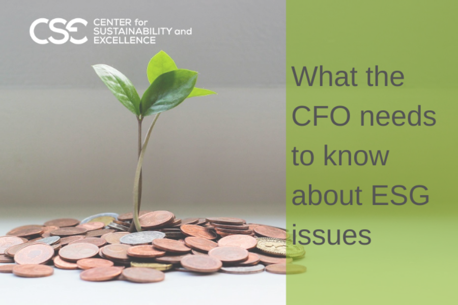 What the CFO needs to know about ESG issues