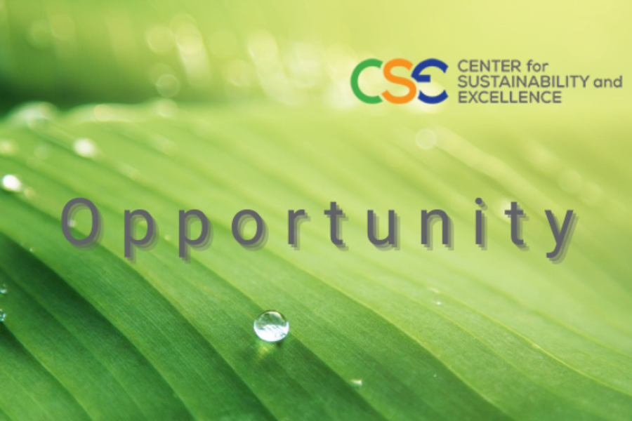 Sustainability (ESG) as a game changer:  Sustainability (ESG) Professionals in the Spotlight