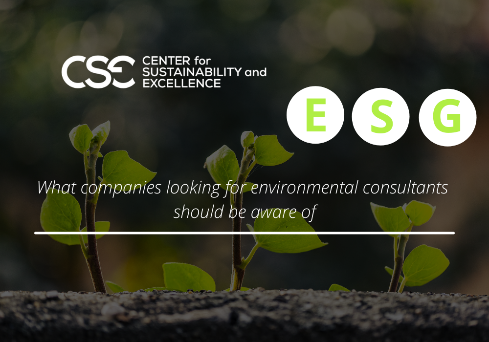 What companies looking for environmental consultants should be aware of
