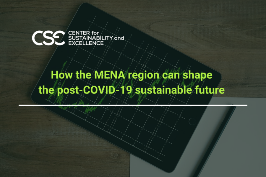MENA Region: Shaping a sustainable future