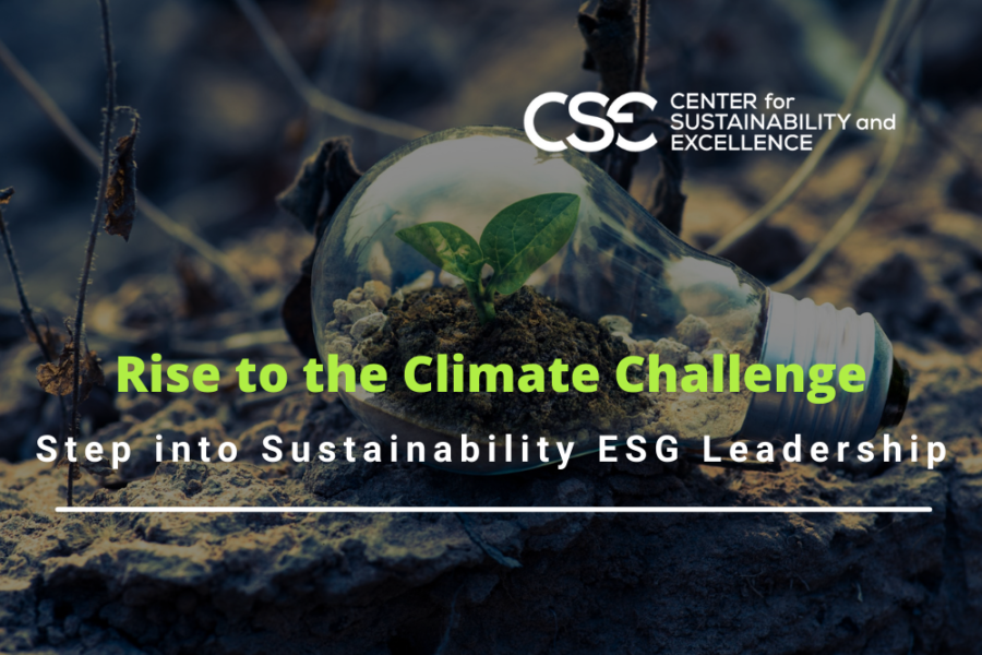 Rise to the Climate Challenge: Step into Sustainability ESG Leadership